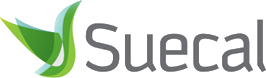Suecal - Startup - Create Company/ Business in Egypt